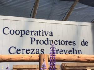 Cooperativa de productores. Foto: Cocina y Negocios